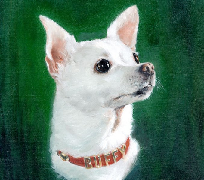 oil painting portrait of a chihuahua