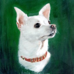 portrait oil painting of white Chihuahua close up