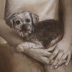 Custom portrait in oil of Yorkshire Terrier cuddled in arms
