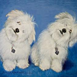 Portrait Oil Painting of Coton de Tulear dogs