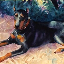 Painted portrait of Doberman Pinscher dog