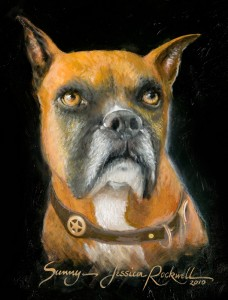Pet Oil Portraits of Dog Sunny the Boxer
