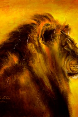 oil portrait of lion
